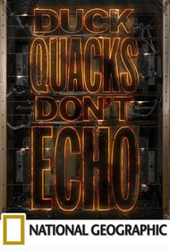 Duck Quacks Don't Echo