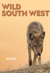 Wild South West