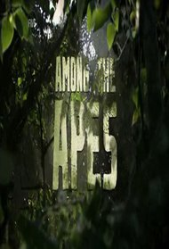 Among The Apes