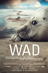Wad: surviving on the border of water and land