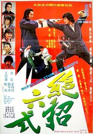 Marvelous Stunts Of Kung Fu