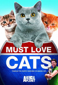 Must Love Cats