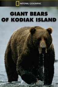 Giant Bears of Kodiak Island