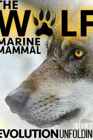 The Wolf: Marine Mammal