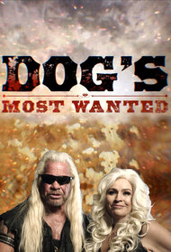 Dog's Most Wanted