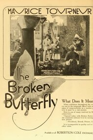 The Broken Butterfly