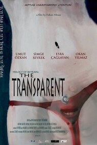 The Transparent