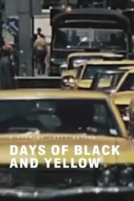 Days of Black and Yellow