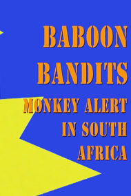 Baboon Bandits: Monkey Alert in South Africa